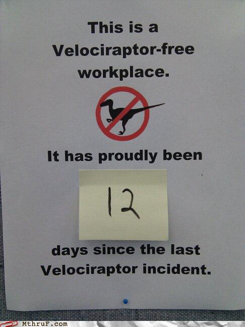 incidente conn velociraptor